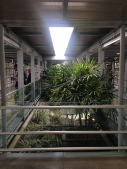 Plants are typical in the outdoor metro stations